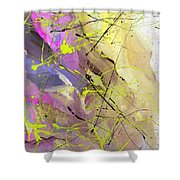 2nd  Symphony Of The Voyage Of The Stars  Shower Curtain