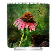 3 Amigos Echinacea Coneflower Grunge Art Shower Curtain