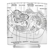 Animal Cell Diagram Shower Curtain