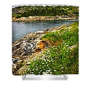 Atlantic Coast In Newfoundland Shower Curtain