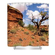 Canyonlands Needles District Shower Curtain