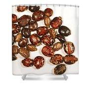 Castor Beans Shower Curtain