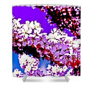 Cherry Blossom Art Shower Curtain