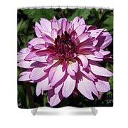 Dahlia Named Lauren Michelle Shower Curtain