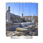 Delos Shower Curtain