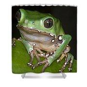 Giant Monkey Frog Shower Curtain