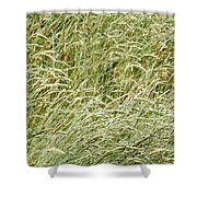 Grasses Shower Curtain