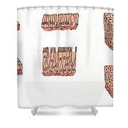 Illustration Of Epithelium Types Shower Curtain