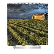 Newly Planted Crop Shower Curtain