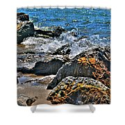 3 Of Mother Natures Finest  Textures Shower Curtain