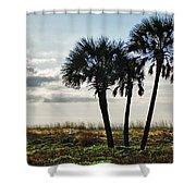 3 Palms On The Beach Shower Curtain