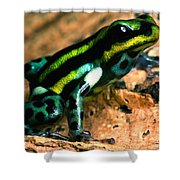 Pasco Poison Frog Shower Curtain