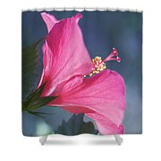 Pink, Blue And Green Shower Curtain