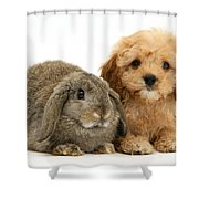 Puppy And Rabbit Shower Curtain