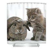 Rabbit And Kitten Shower Curtain