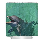 Roatan, Bay Islands, Honduras Shower Curtain