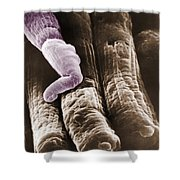 Rods And Cones Shower Curtain