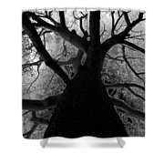 Tree Of Thorns Shower Curtain