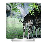 Two Stripes Shower Curtain