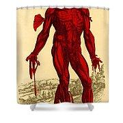 Vesalius De Humani Corporis Fabrica Shower Curtain by Science Source