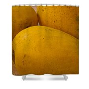 3 Yellow And Luscious Mangos On A White Sheet Shower Curtain