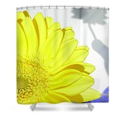 3764-001 Shower Curtain