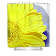 3767-002 Shower Curtain