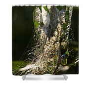 Bird-cherry Ermine Caterpillars Shower Curtain