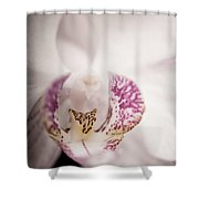 Close Up Shoot Of A Beautiful Orchid Blossom Shower Curtain
