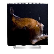 Deep Sea Angler Shower Curtain