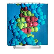 Dna Shower Curtain by Science Source