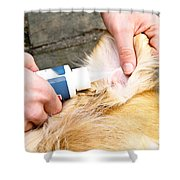 Dog Grooming Shower Curtain by Photo Researchers, Inc.