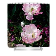 Giverney Shower Curtain