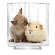 Kitten And Guinea Pig Shower Curtain