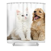 Kitten And Puppy Shower Curtain
