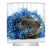 Kitten With Tinsel Shower Curtain