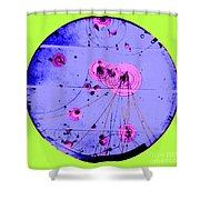 Proton-photon Collision Shower Curtain