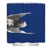 Snowy Owl In Flight Shower Curtain