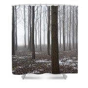 Trees With Fog Shower Curtain