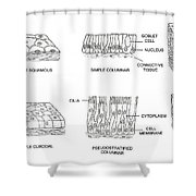 Types Of Epithelial Cells Shower Curtain