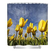 Woodburn, Oregon, United States Of Shower Curtain
