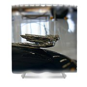 41 Packard Ornament Shower Curtain
