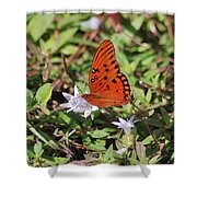42- Fritillary Butterfly Shower Curtain