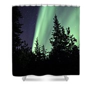 Aurora Borealis Above The Trees Shower Curtain