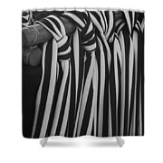 5 Black And White Ties Shower Curtain