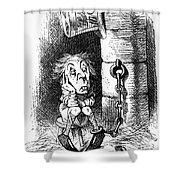 Carroll: Looking Glass Shower Curtain