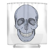Illustration Of Anterior Skull Shower Curtain by Science Source