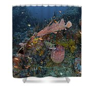 Reef Scene With Coral And Fish Shower Curtain