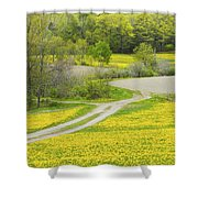 Spring Farm Landscape With Dandelion Bloom In Maine Shower Curtain