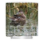 Teal Duck Shower Curtain